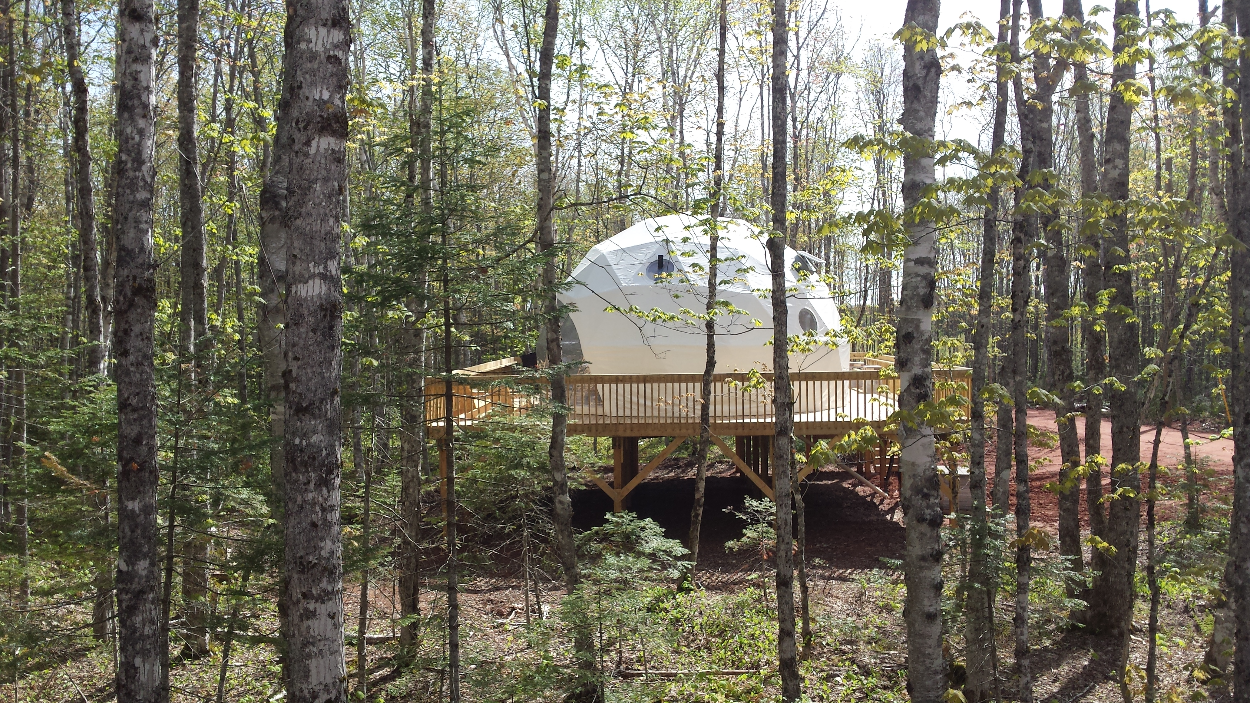 What Are Treepods Treetop Haven