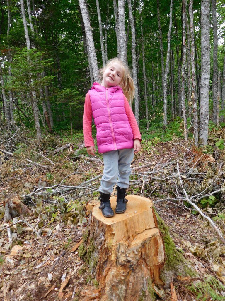 Danika at Treetop Haven